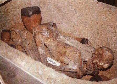 pharao zeichen